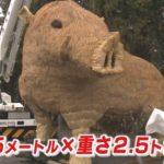 姫路市にジャンボイノシシ、園児たちも大はしゃぎ! 来年の干支「亥」が稲穂でお目見え